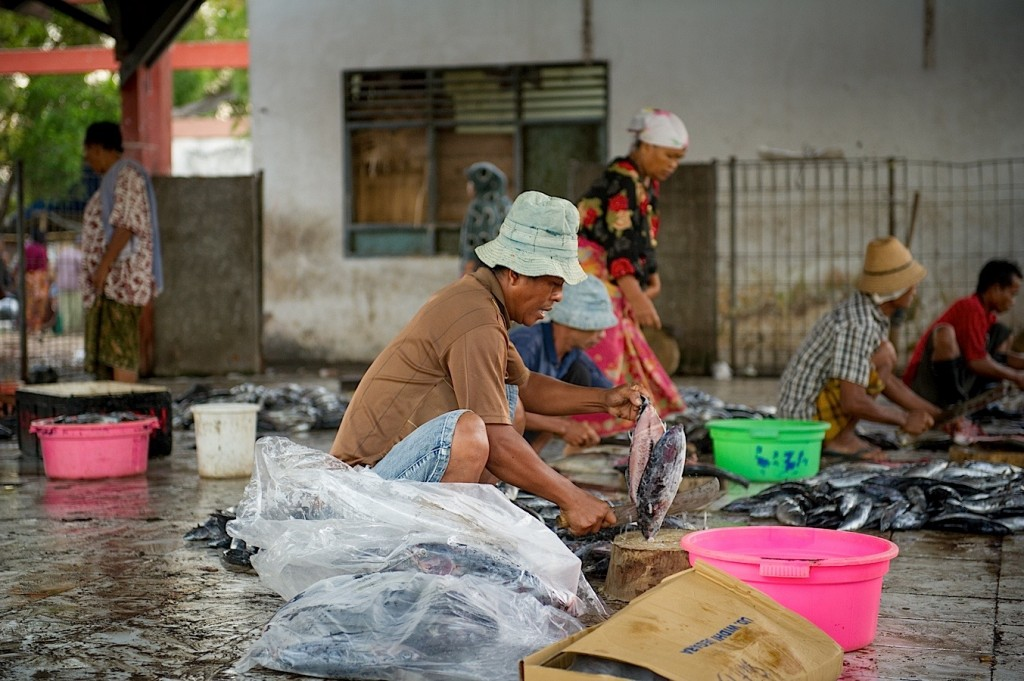 Photo-Reportage Indonesie Lombok - Fish Market de Tanjung Luar - 10 (WEB)