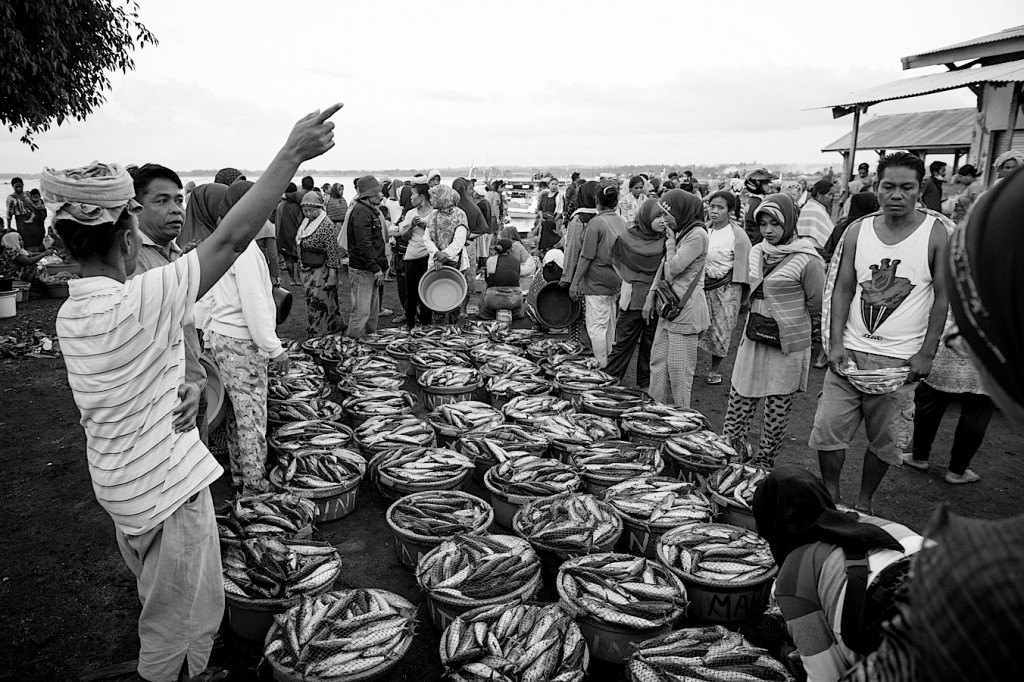 Photo-Reportage Indonesie Lombok - Fish Market de Tanjung Luar - 11 (WEB)
