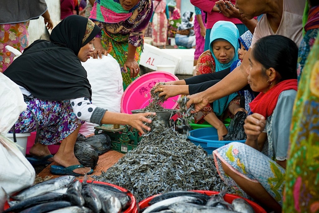 Photo-Reportage Indonesie Lombok - Fish Market de Tanjung Luar - 12 (WEB)